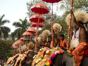 from the backseat of an autorickshaw: thrissur pooram
