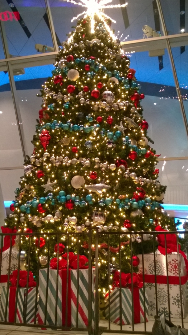 cn tower-xmas tree